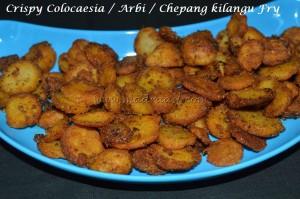 Colocaesia / Arbi / Chepang kilangu Fry