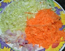 Shredded cabbage, carrot and onions
