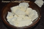 Homemade Paneer / Cottage Cheese cubes