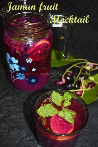 Jamun Fruit / Navvar Pazham Mocktail