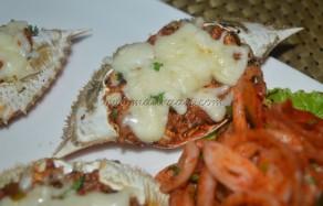 Crazy Bagha Crabs