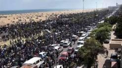 Protest for Jallikattu BAN