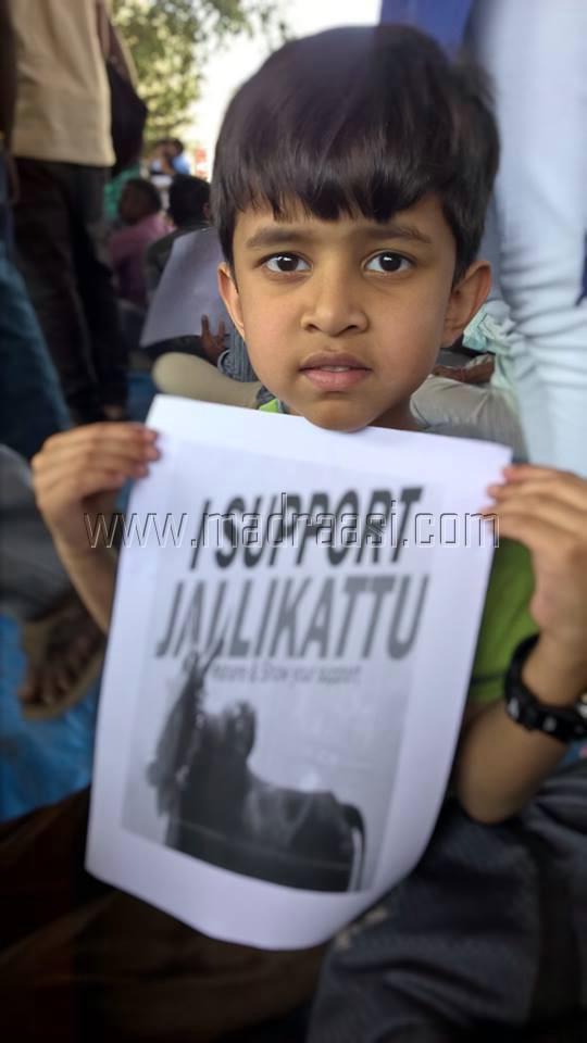 We support Jallikattu from Hosur