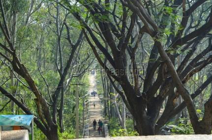 Long way - Antara Gangae